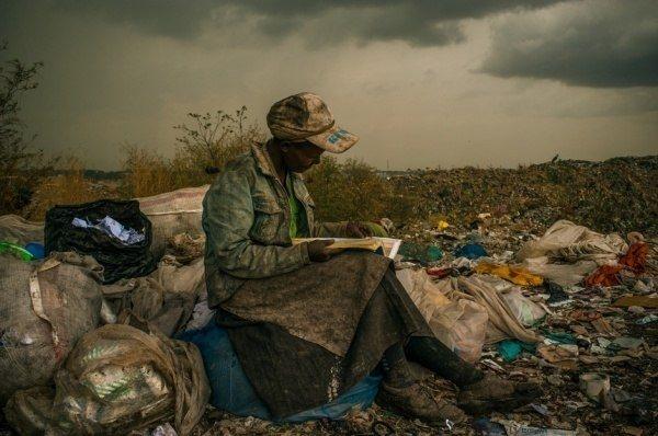 Экологическая Безопасность— Это Миф или Реальность?