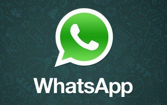 WhatsApp, Спец! Есть Вопрос? Задавай!