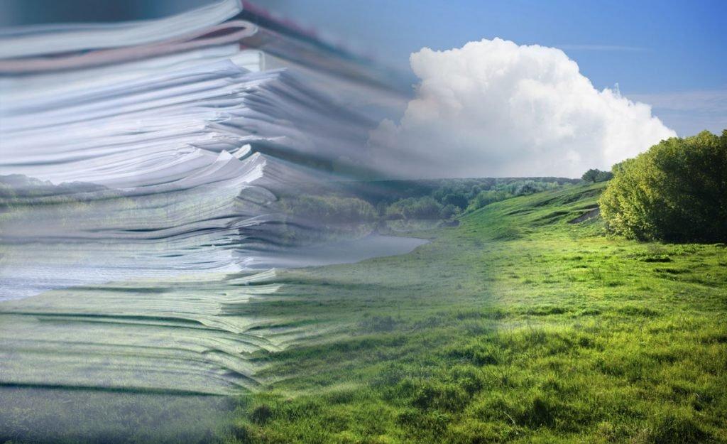 отчётность по экологии 2019