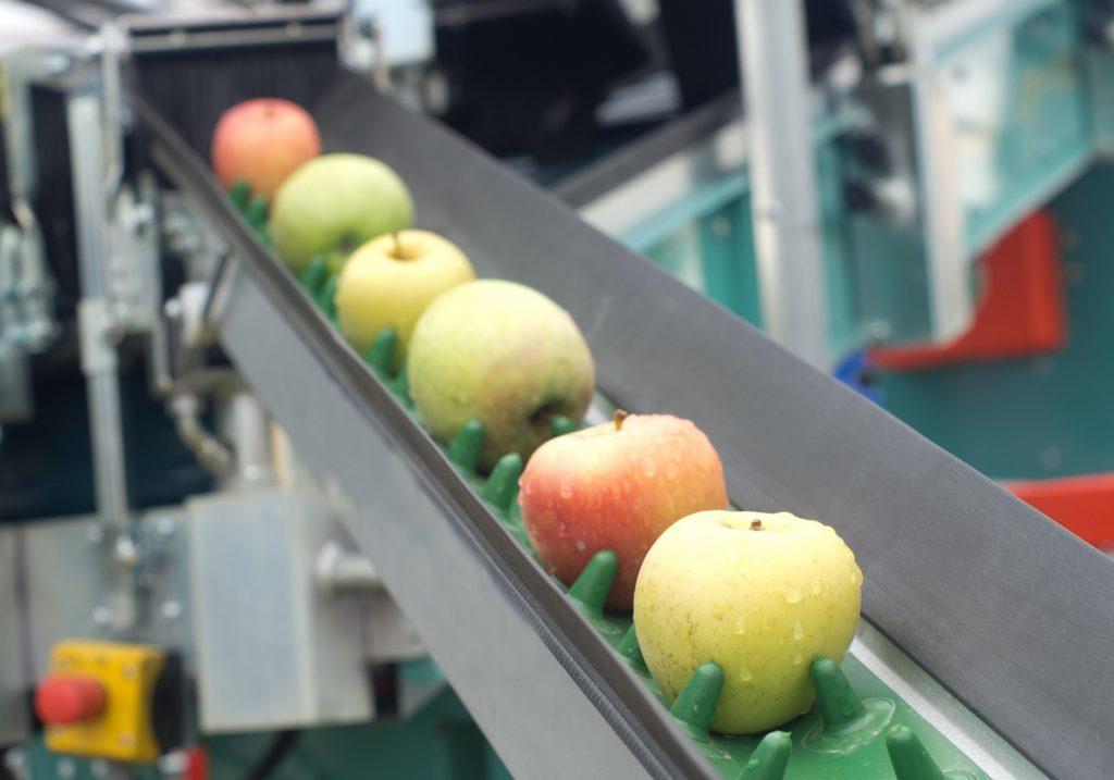 Охрана Труда На Пищевом Производстве в 2019 Году! Что Нового?