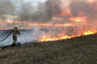 изменения в правила противопожарного режима